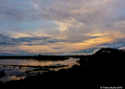 BRASIL, Rio Javari, Amazonia, 2011
