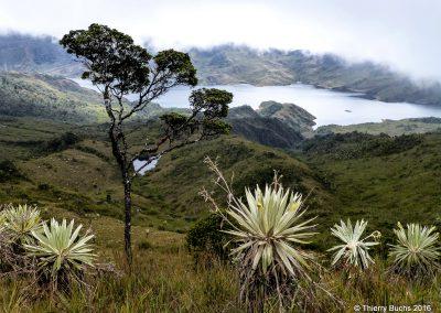 COLOMBIA, Chingaza, 2012