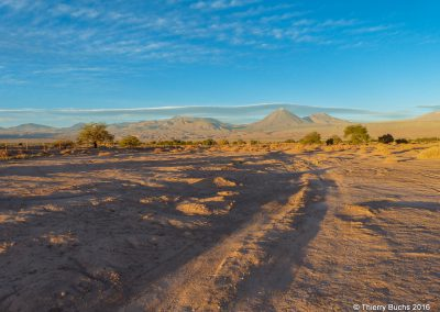 CHILE, San Pedro de Atacama, 2013
